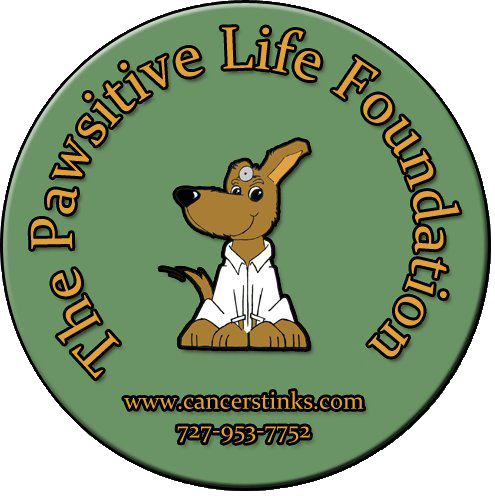pawsitive-life-foundation